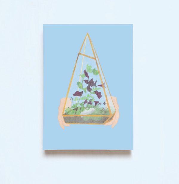 carte terrarium